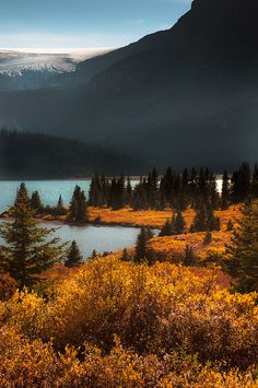 Bow Lake ~ Canadian Rockies