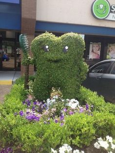Have you ever seen a tooth bush with a tooth brush before?