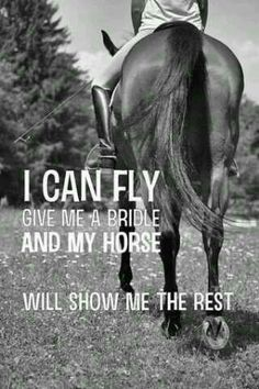Just give me my horse and well take off, leaving all our problems behind for awhile ~TheSapphirEclipse