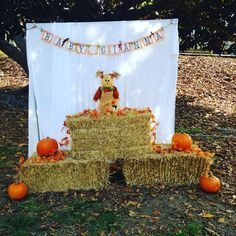 Little Pumpkin Baby Shower Baby Shower Party Ideas | Photo 1 of 11 | Catch My Party