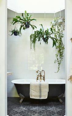Les plantes prennent possession de la salle de bains grâce à ces pots suspendus