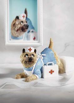 ♛ Dapper Dogs Figurine Toni Goffe Nurse Alice Cairn Terrier   eBay