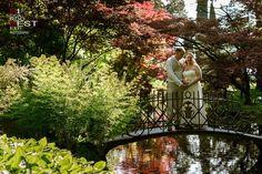 Amazing intimate wedding in Bellagio Lake Como Italy, Lake Como Wedding, Elopement Ideas, Empire, Wedding Dresses, Amazing, Nature, Bride Dresses, Bridal Gowns