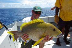 Bottom Fishing