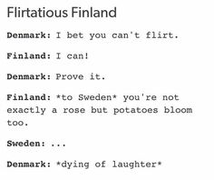 Flirtatious Finland #hetalia <<< Okay okay okay Finland can't screw up that badly can he?