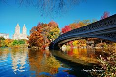 https://flic.kr/p/hj6dDW | Central Park, Autumn | Manhattan midtown buildings and Bow Bridge. Always colorful as usual.   Photo prints  songquan-deng.artistwebsites.com/   Digital file download/license www.newyorkcitymanhattanphotos.com   Please follow me on Facebook: www.facebook.com/SongquanPhotography
