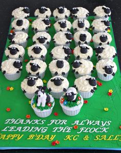 Extremely cute Sheep Cupcakes