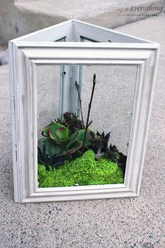 DIY Faux Succulent Garden using Dollar Store Frames - Monthly DIY Challenge - Anything & EverythingAnything & Everything