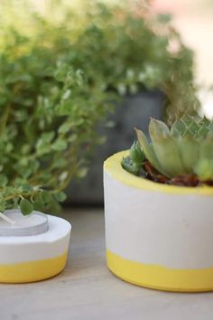Les estivales: le cache-pot en plâtre {DIY} - Avec ses 10 p'tits doigts... Soyez DIY !