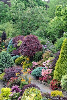 Four Seasons Garden Evergreen Garden, Garden Guide, Garden Styles, Four Seasons, Beautiful Gardens, Garden Landscaping, Garden Design, Landscape, Plants