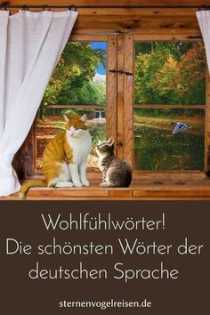 99 feel-good words – the most beautiful words in the German language - Innov Education