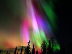 My husband and I once saw the aurora borealis together; it was coming down directly above us in every single color, filling the sky, continually dancing for hours. It was by far one of the most beautiful things I have ever seen in my life.  I dearly hope to see it again someday.