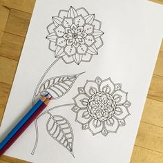 Blossom  Hand Drawn Adult Coloring Page Print by MauindiArts