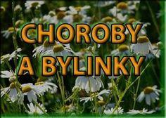 Vyberte si neduh a hledejte bylinky Healing Herbs, Medicinal Herbs, Look Body, Dieta Detox, Edible Flowers, Herbal Tea, Natural Cures, Natural Medicine, Herbal Remedies