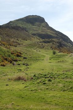 Arthur's Seat in Edinburgh, Scotland. Where Mollie & I have a daily dog walk, when possible!