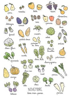 Fruits & Vegetables calendar on Behance Paleo Protein Powder, Recipe Drawing, Food Doodles, Pomes, Garden Journal, Food Journal, Journal Ideas, Fruit And Veg, Bullet Journal Inspiration
