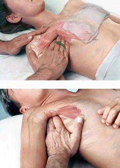 give a good massage ... - Imgur