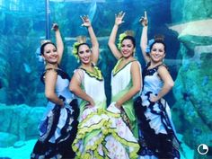 Ballet de Sally Savedra representing Spain at the Aquarium of the Pacific  http://balletdesallysaved.wix.com/bdsallysavedra