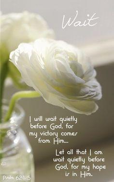 Praise The Lord. Just more Jesus. Bible Verses Quotes, Bible Scriptures, Faith Quotes, Healing Scriptures, Psalm 62, Isaiah 55, Spiritual Inspiration, Spiritual Quotes, Trust God