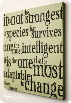 Charles Darwin Canvas Inspirational Wall Quote in by RightGrain, $25.00