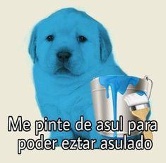 25 cute puppy memes that are really cute - Famous Last Words Best Memes, Dankest Memes, Funny Memes, Jokes, Funny Pugs, Funny Shit, Memes Lindos, Angel Meme, Funny Spanish Memes
