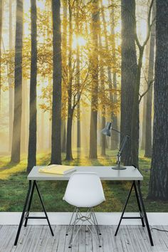 Get the ultimate workspace with this forest wallpaper design. Golden sunlight breaks through this autumn forest. The wonderfully warm and natural tones in this mural give your home an inviting and comforting feel. Perfect for creating a calming environment for study, or as a breathtaking backdrop in dining rooms.