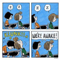 Don't fall asleep in class!