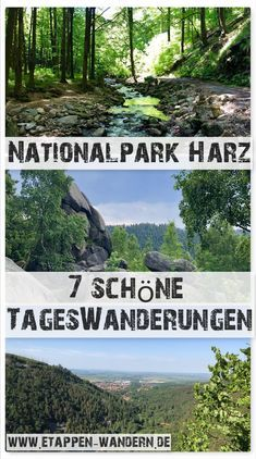 Hiking in the Harz Mountains - tours, pictures, stamps and impressions .-Wandern im Harz – Touren, Bilder, Stempelstellen und Eindrücke resin - Best Travel Sites, Travel Tips For Europe, Europe Destinations, Koh Lanta Thailand, Sister Tatto, Voyage Europe, Photos Voyages, Backpacking Europe, Camping Hacks