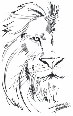 lion sketch tattoos aslan lion tattoo tattoos of lions lion drawing Tattoo Design Drawings, Tattoo Sketches, Drawing Sketches, Art Drawings, Tattoo Designs, Tattoo Ideas, Drawing Ideas, Drawing Art, Bible Drawing