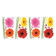 Small Gerber Daisies Peel and Stick Wall Decals - RMK1553SCS