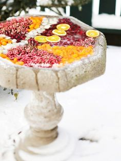 winter - frozen bird food