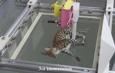 New Research Allows for Incredibly Colored 3D Prints. software that simulates how the hydrographic film will be stretched as it is applied to a 3D model. The data created by the simulation is used to alter the texture map image, which can then be printed onto a clear sheet of hydrographics film. A jig with a linear actuator is then used to precisely dip the printed part into the water bath holding the printed film. The result is a full-color texture map on your single color 3D print. To get…