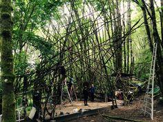 Woods Stage Rebuild