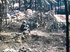 1st Infantry Division in Vietnam 1971 US Army The Big Picture: http://youtu.be/uSzgGjID4Ng #Vietnam #BigPicture #1stInfantry