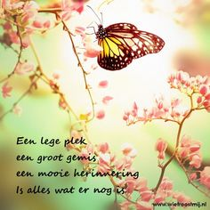 Een lege plek, een groot gemis, een mooie herinnering is alles wat er nog is.   #herinnering #gemis #liefde #vlinder #butterfly