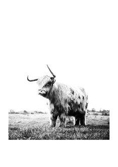 Retrospection - East End Prints Ltd Buy Pictures, Print Pictures, Framed Art Prints, Fine Art Prints, Canvas Prints, White Art, Black White, Limited Edition Prints, Animal Photography
