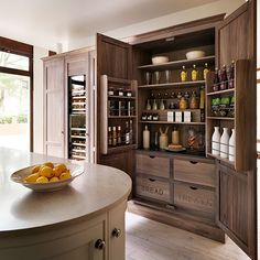 Larder cupboard with stepped shelving