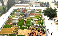Value Farm – экспериментальная ферма на старом заводе в Китае. (6 фото)