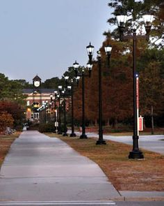 UNCW, Wilmington NC. Miss this place so much!