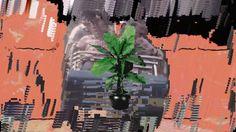 Hipercondução, Jorge H. Loureiro + seixlacK - Seu Lugar é o Cemitério on Vimeo