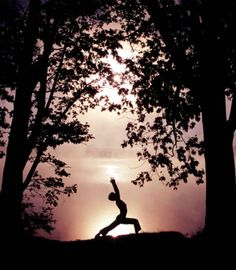 beautiful yoga, warrior silhouette