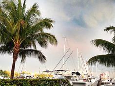 Coconut Grove Marina