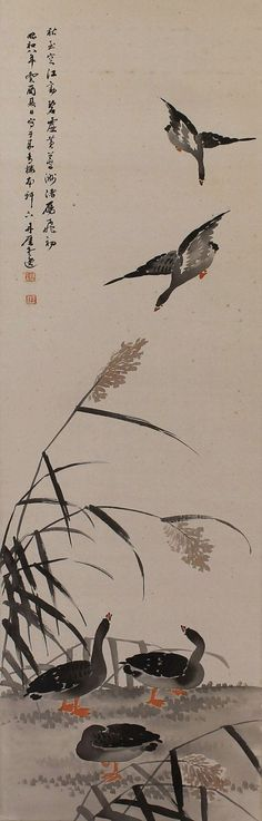 Geese in reeds, Ueda Tangai (b.1863). Japanese hanging scroll painting