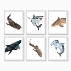 Classy Modern Simple · Prints · Invitations · Designs by ashleyringger Shark Nursery, Ocean Themed Nursery, Nautical Nursery Decor, Shark Room, Nursery Ideas, Animal Bedroom, Animal Nursery, Watercolor Whale, Simple Prints