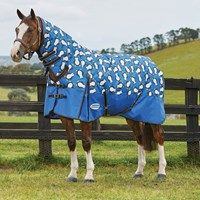 14 Best Weatherbeeta Autumn Winter 2017 Horse Rugs Images