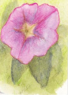"""ATC card for a swap - theme is stars.  """"Stars in nature #1"""" Copyright Donna Capps  http://mygardenblue.wordpress.com"""