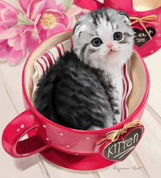 Scottish Fold by Kajenna.deviantart.com on @DeviantArt