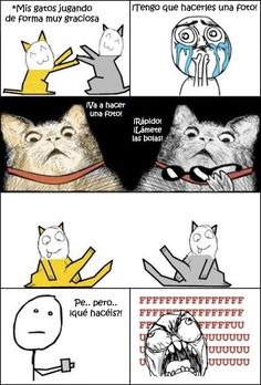 Every time - Just plain funny :) - Cat Memes Derp Comics, Rage Comics, Funny Comics, Funny Cartoons, Stupid Funny Memes, Funny Relatable Memes, Sarcastic Memes, Funny Cats, Funny Animals