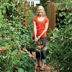 Tips for planting a backyard herb and vegetable garden... I resolve to make this the most successful year ever with my veg garden.