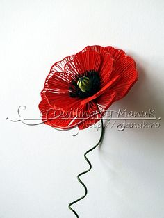Hey Everybody!   Quick post with a quilled poppy! What was initially supposed to be an entire poppy field become a single flower. This is one of